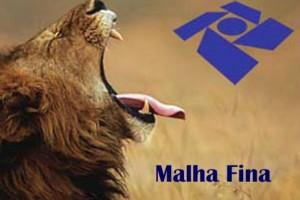 malha-fina-300x200
